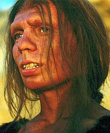 A Neanderthal woman with fair skin, brown hair going down to her shoulders and tied up in a low bun, blue eyes, no eyebrows, and small eyelashes