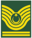 Army-TUR-OR-07-1.png