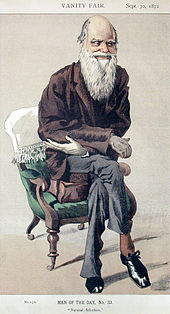 Full length portrait of a very thin white bearded Darwin, seated but leaning eagerly forward and smiling.