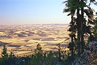 Palouse fields, Washington from Kamiak Butte.jpg